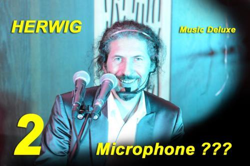 Herwig Micro 03